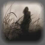 L'ombra di Rita Sanna