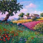 7 Ginestra fiorita di Antonino Cammarata